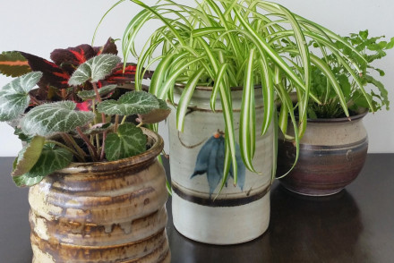 Upcycled Ceramic Jars to Plant Pots