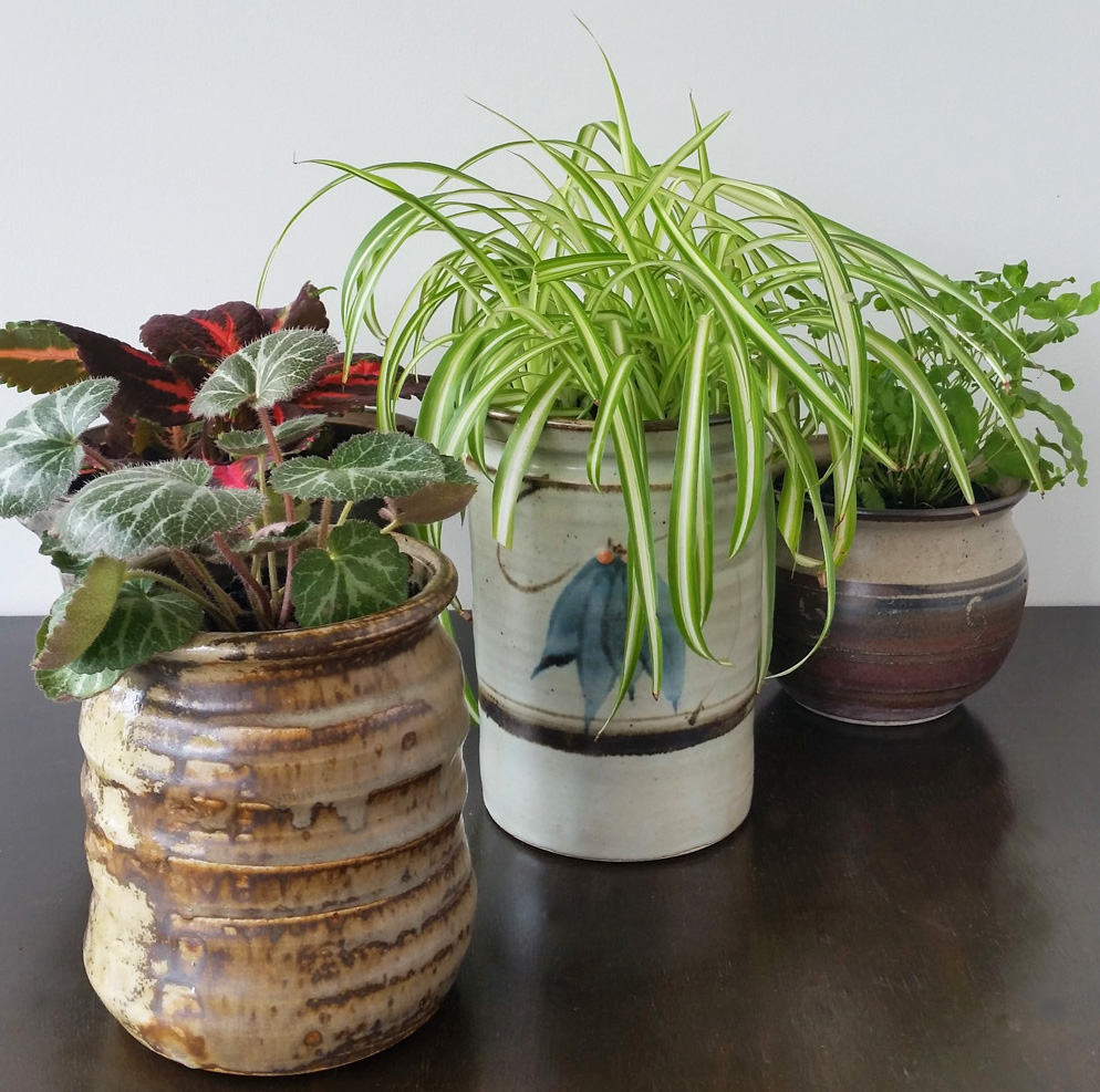Recycled Plant Pots: Upcycled Ceramic Jars To Plant Pots