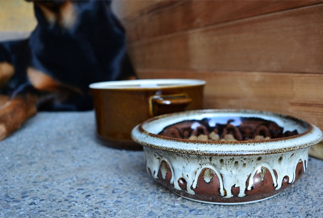 UPCYCLE DIY Pet Bowls From Old Stoneware Dishes