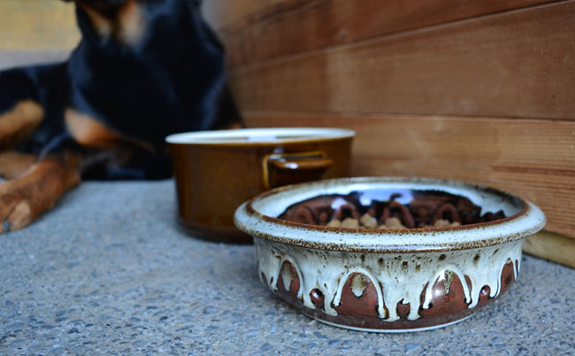 UPCYCLE | DIY Dog Bowl From Old Pottery Dishes
