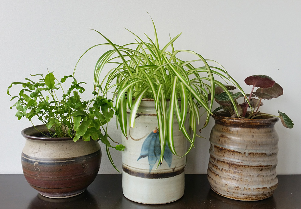 ceramic plant pots diy project upcycled ceramic jars to plant pots 30025